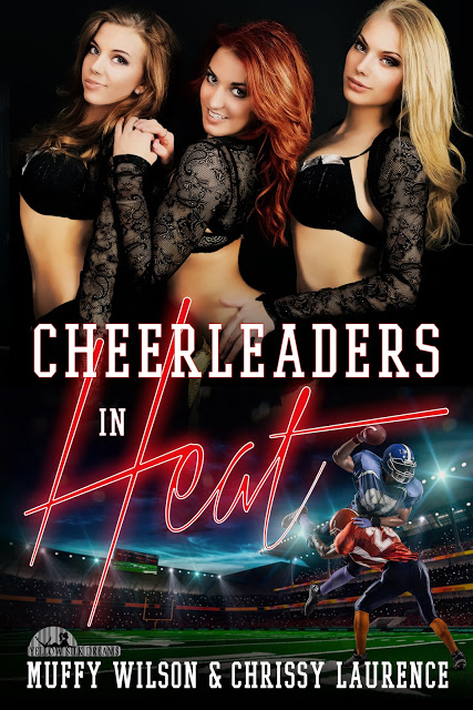 Guest Post - Cheerleaders in Heat Blog Tour